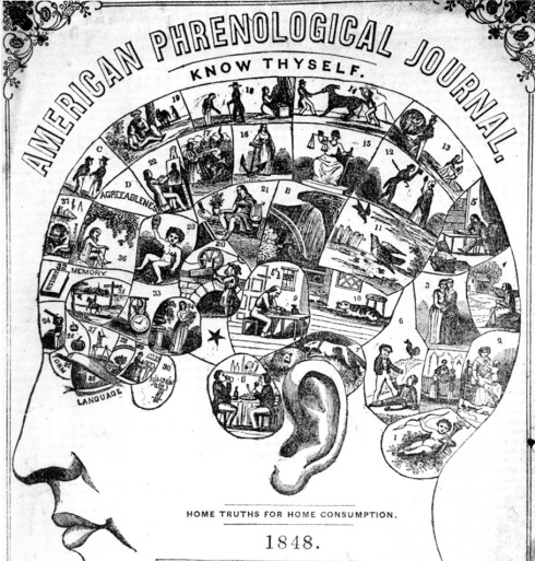 Phrenology-journal